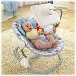 X7045-newborn-to-toddler-apptivity-seat-b-2